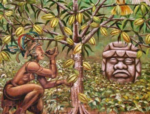 Sacred Cacao Medicine Ceremony and Holotropic Breathwork